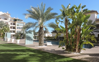 Apartment - Semaine - Guardamar - Guardamar